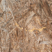 Pressed wood shavings fragment — Stock Photo