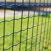 Green field behind the fence — Stock Photo