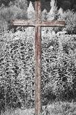Cross — Stockfoto