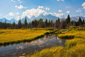 Riflessione di teton nel parco nazionale di grand teton — Foto Stock
