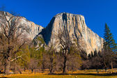 El Captain Rock in Yosemite National Park,California — Stock Photo