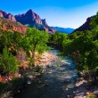 Virgin River Running through Zion National Park,Utah,United States — Stock Photo