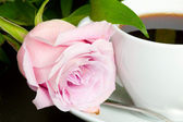 Cup of coffee with delicate pink rose — Stock Photo