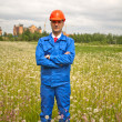 Engineer wearing protective helmet in a field — Stock Photo