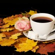 White cup of tea with red rose and maple leaf — Стоковое фото