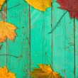 colored leaves on wooden board — Stock Photo