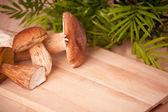 Ceps on kitchen table — Stock Photo