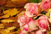 Colorful autumn flower bouquet — Stock Photo
