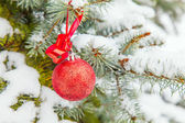 Fir-tree  with a Christmas toy — Stock Photo