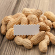 Peanuts with copy space for text. — Stock Photo