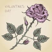 ローズとバレンタイン カード — ストックベクタ