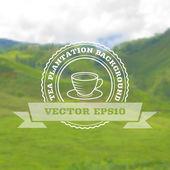 Tea plantation landscape — Stock Vector