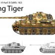 German WW2 Tiger B (King Tiger) tank with long 88 mm gun  — Stock Vector