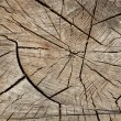 Foto Stock: Cracked wood board