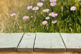 Fresh summer flowers, grass and sunlight, and wooden flooring. — Stock Photo