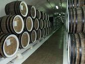 Cellar with wine — Stock Photo