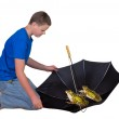 Two frogs in an umbrella — Stock Photo