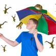 It is raining frogs — Stock Photo