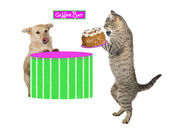 Kitty serving a dog a cream cake — Stock Photo