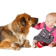 Baby and Dog playing — Stock Photo