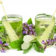 Stock Photo: Ayuvednaturopathy herbal teas