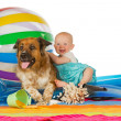 Adorable baby with dog - Stockfoto