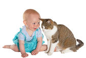 Cat and smiling baby — Stockfoto