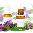 Homeopathy — Stock Photo #26399537