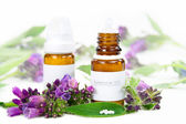 Homeopathy — Stock Photo