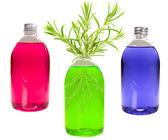 Verde botella con romero — Foto de Stock