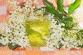 Herbal infusion of Elder or Sambucus blossoms — Stock Photo