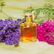 Stock Photo: Essential oil with fresh flowers