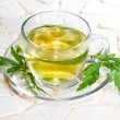 Stock Photo: Verbenofficinalis leaves and herbal tea