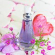 Pretty bottle of perfume — Stock Photo