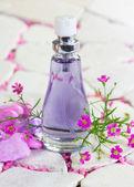Pretty bottle of perfume — Stock Photo