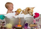 Adorable baby girl bathing with her dog — Stock Photo
