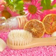 Bathing brush and gel with Echinacea — Stock Photo #29000827