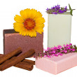 Natural herbal soaps — Stock Photo