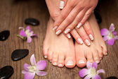 Relaxing pink manicure and pedicure with a orchid flower — Stockfoto