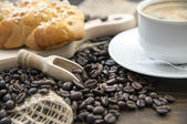 Arabica coffee beans with a cup of coffee — Stock Photo