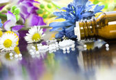 Homeopathic globules with blooms — Stock Photo