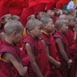 图库照片: Young buddhist monks at ceremony