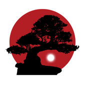 Silhouette of a bonsai on a red sun background — Stock Photo