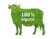 Symbol of organic beef — Stock Photo
