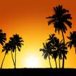 Group of coconut trees on sunset background — Stock Photo