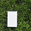 Close up of hand holding blank notepad, on green field backgroun — Stock Photo