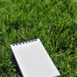 Blank notebook on grass field — Stock Photo
