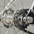 Bicycle rear wheel with chain & sprocket — Stock Photo