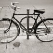 Old Vintage Bicycle — Stock Photo