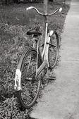 Classic vintage retro city bicycle — Stock Photo